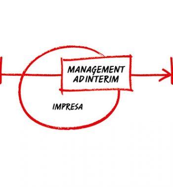 Servizi di management
